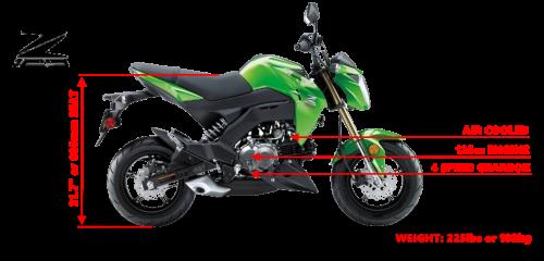 Z125Pro 2021 Website